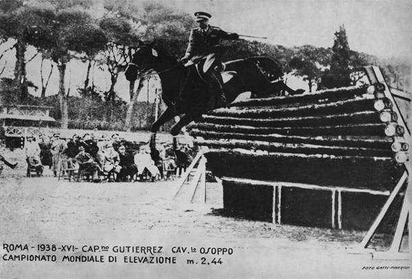 Alberto Larraguibel Morales на коне Huaso, фото рекорды лошадей коней фотография