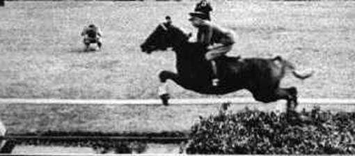Andre Ferreira в Йоханнесбурге на жеребце Something, фото рекорды лошадей фотография