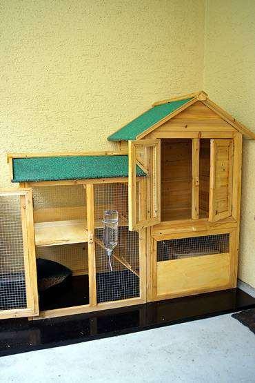 Как сделать домик для карликового кролика