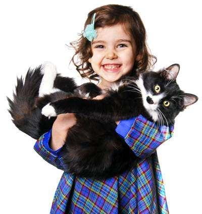 Девочка и кошка, фото кошки фотография