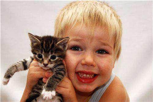 Мальчик и котенок, кошки фото фотографии