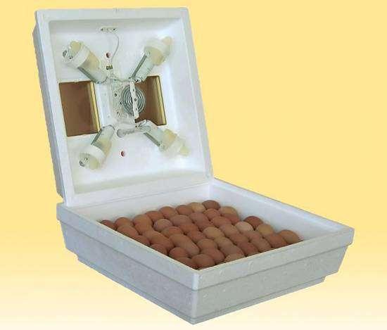 Бытовой инкубатор для яиц домашней птицы, фото фотография картинка