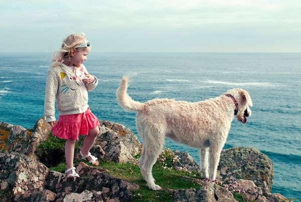 Девочка и собака, фото фотография новости о собаках