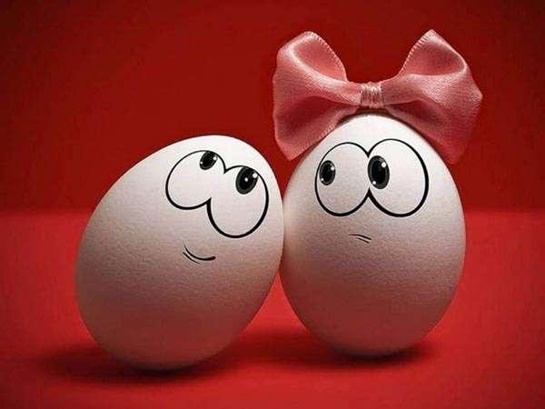 Куриные яйца, фото консультации по домашней птице фотография