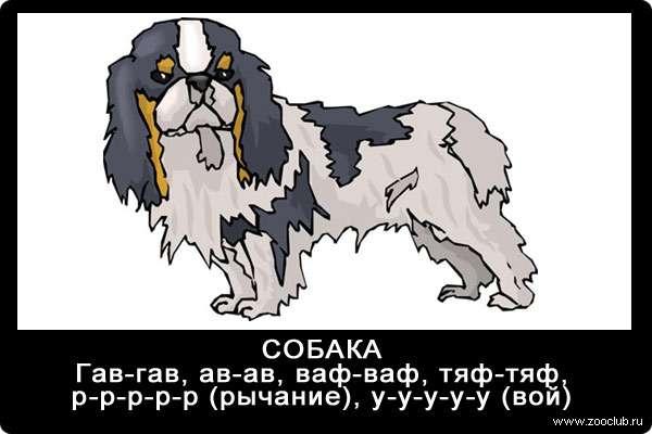 Голос собаки, гав-гав, тяф-тяф, у-у-у-у, р-р-р-р, звуки животных для детей