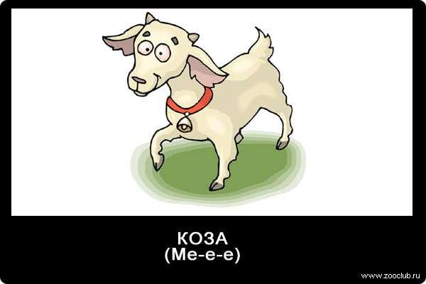 Голос козы, ме-е-е, звуки животных для детей