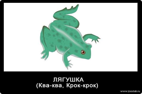 Голос лягушки, ква-ква, звуки животных для детей