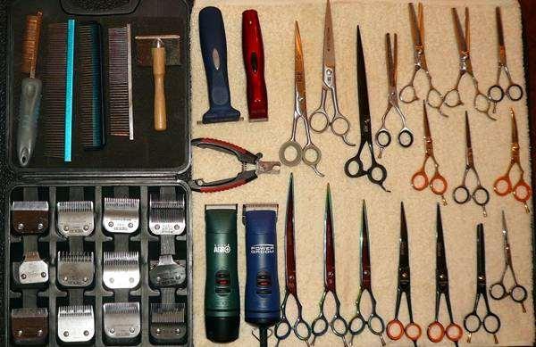 Инструменты для стрижки собак и кошек в Зоосалоне, фото фотографи