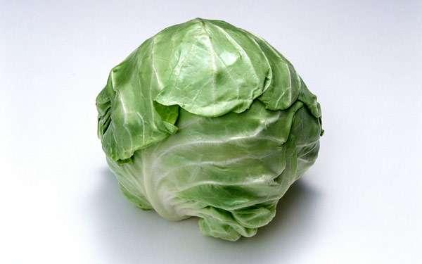 Кочан капусты, фото фотография картинка овощи