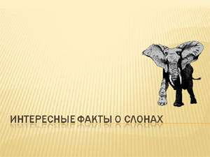 Лучшие презентации для школьников скачать бесплатно скачать  Бесплатно скачать презентацию Интересные факты о слонах