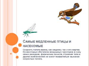 Бесплатно скачать презентацию для школы - Самые медленные птицы и насекомые