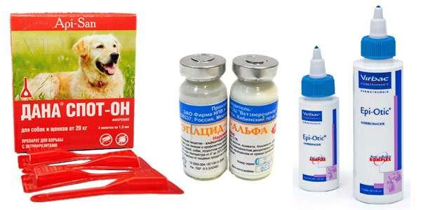 Аллергия у детей народные способы лечения