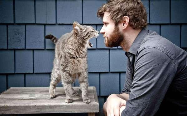Картинки по запросу картинка мужчина и кот
