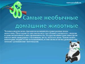 Скачать презентацию для школы - Самые необычные домашние животные