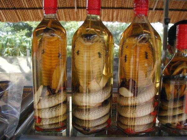 Китайские настойки со змеями, фото фотография картинка
