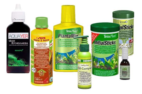 Удобрения для аквариумных растений в домашних условиях