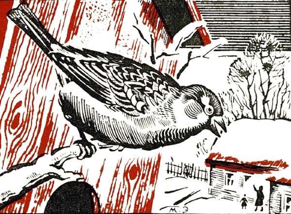 Воробей сидит на старой березе, рисунок иллюстрация к сказке