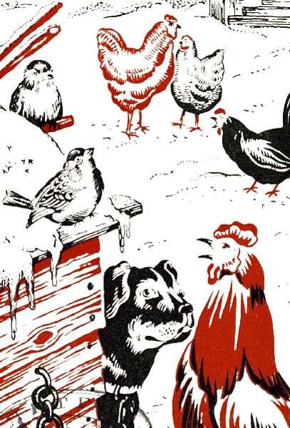 Домашние птицы, рисунок иллюстрация к сказке
