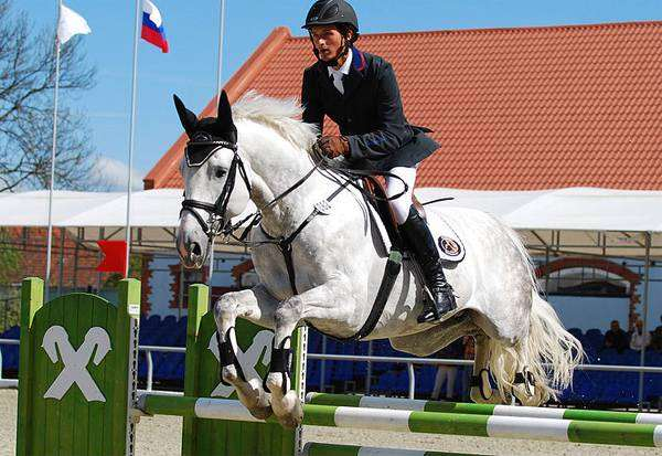 Всадник на лошади преодолевает препятствие, фото лошади фотография
