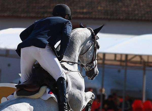 Положение всадника на лошади при прыжке, фото лошади фотография