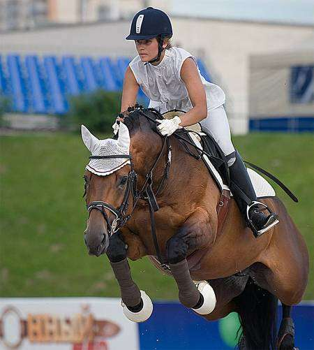 Всадница на лошади, фото фотография