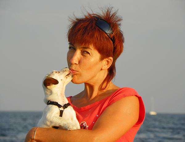 Щенок джек-рассел-терьера, собаки фото фотография
