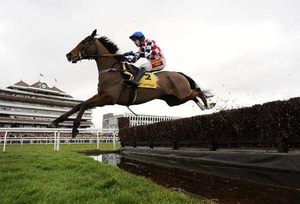 Лошадь под всадников преодолевает препятствие, фото лошади фотография