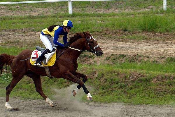 Всадница на лошади, фото верховая езда фотография