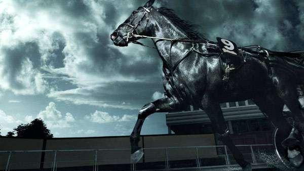 Скачки, фото лошади фотография кони картинка
