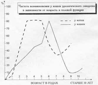 Таблица. Частота возникновения у кошек урологического синдрома в зависимости от возраста и половой фунции