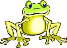 Клипарты лягушка, жаба, амфибии, клипарт, клипарты животные ...