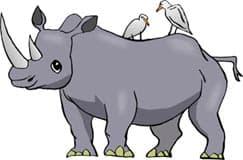 носорог с цаплями, клипарт