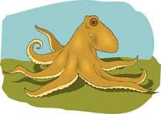 осьминог, спрут, клипарт
