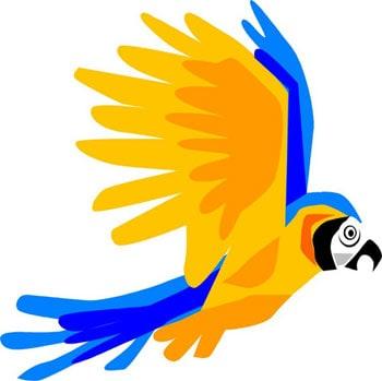 Попугай ара, клипарты ара, клип арт ...: zooclub.ru/fotogal/clip/birds/43a.shtml