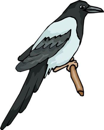 Птица клипарт