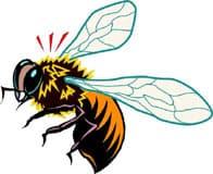 медоносная пчела, клипарт
