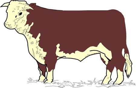 корова, клипарт