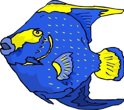 Рыба клипарт