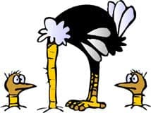 страусы, клипарт