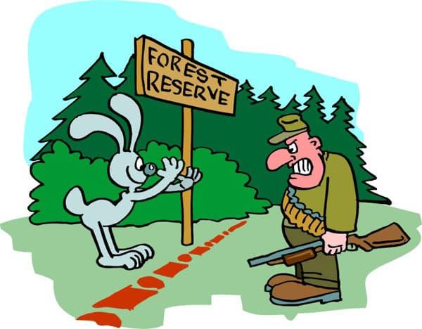 Эстония возведет забор высотой в 2,5 метра на границе с Россией - Цензор.НЕТ 9726