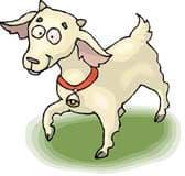 коза, клипарт