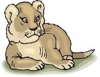 львенок, клипарт