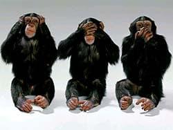 обезьяны: ничего не слышу, ничего не вижу, ничего никому не скажу, обои для рабочего стола, рабочий стол