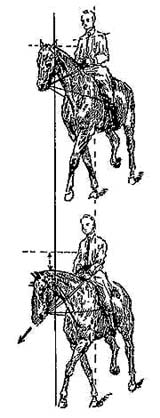 Рис. 21. Тренировка лошади с использованием вспомогательных скользящих поводьев