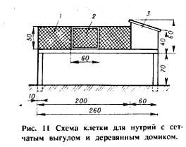 схема клетки для нутрий с сетчатым выгулом и деревянным домиком, рисунок