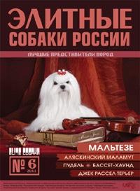 Элитные собаки России № 6