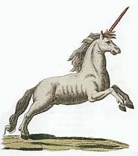 Единорог, картинка рисунок изображение
