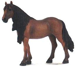 берберийская лошадь, берберийская порода лошадей, фото, фотография