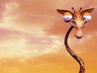 Офигевший жираф,  фотография  обои