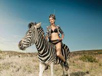 Красивая девушка верхом на зебре